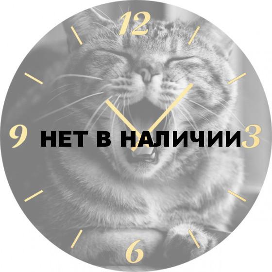 Настенные часы SvS 6001859