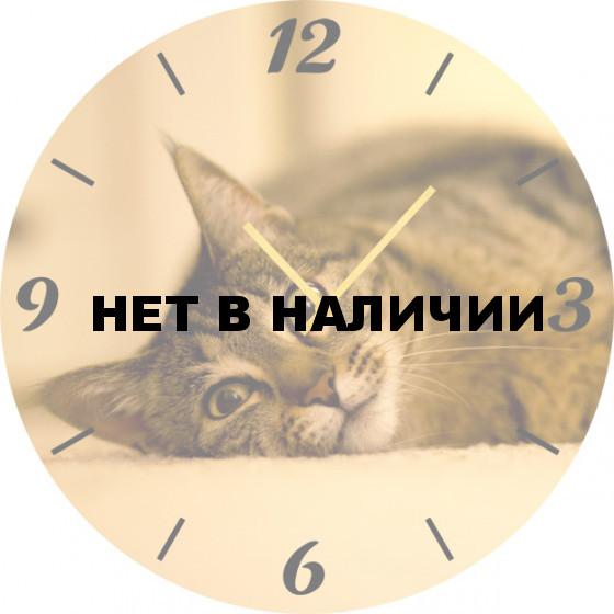 Настенные часы SvS 6001867