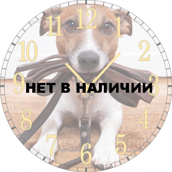 Настенные часы SvS 6002036
