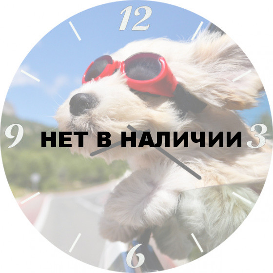 Настенные часы SvS 6002040