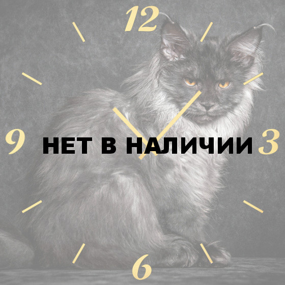 Настенные часы SvS 6002088