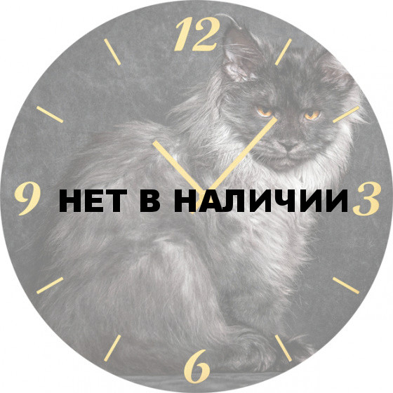 Настенные часы SvS 6002089