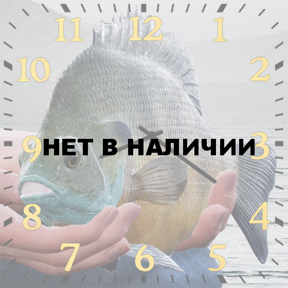 Настенные часы SvS 6002090