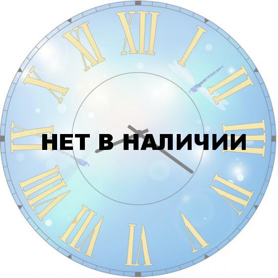 Настенные часы SvS 6002454