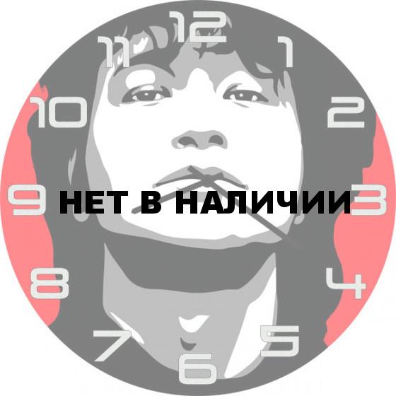Настенные часы SvS 6002486