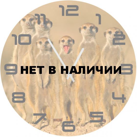 Настенные часы SvS 6002501