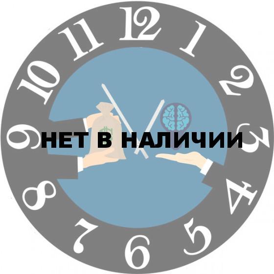 Настенные часы SvS 6002568