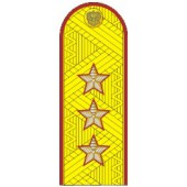 Погоны УИС (ФСИН) генерал-полковник с хлястиком парадные метанит