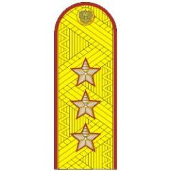 Погоны УИС (ФСИН) генерал-полковник на китель парадные