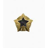 Знак различия Звезда Росстройнадзор малая металл