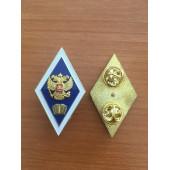 Нагрудный знак (академический) об окончании гуманитарного ВУЗа накладной герб 2 пимса