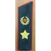 Погоны МО генерал армии нового образца повседневные со скосом на китель