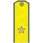 Погоны генерал-майор ФСБ на китель парадные