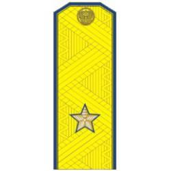 Погоны ФСБ генерал-майор на китель парадные