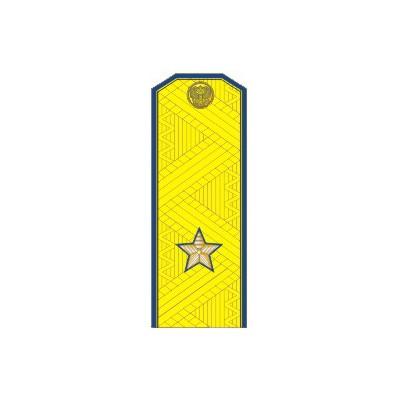 Погоны ФСБ генерал-майор на китель парадные метанит