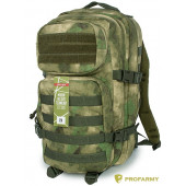 Рюкзак Assault FG 30 л