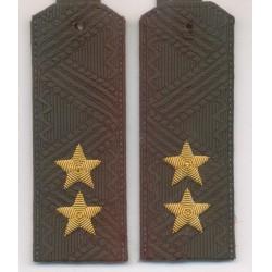 Погоны Росгвардия (ВВ МВД) генерал-лейтенант на зеленую рубашку повседневные