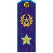 Погоны генерал армии нового образца голубой кант повседневные трапеция