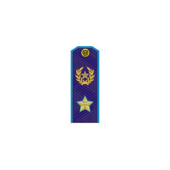 Погоны МО генерал армии нового образца голубой кант повседневные трапеция