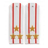 Погоны Береговые части ВМФ вышитые Полковник парадные на белую рубашку