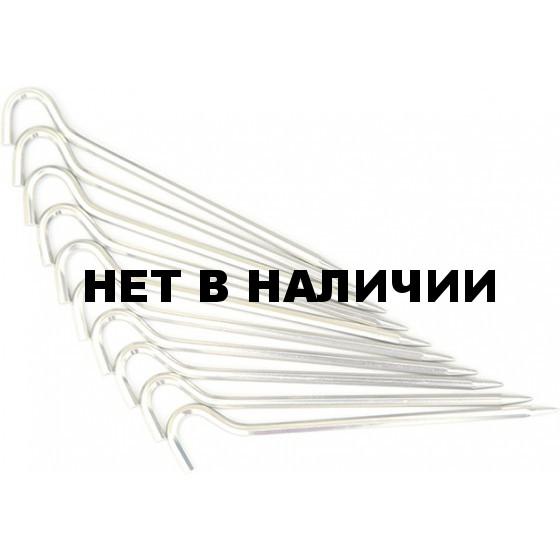 Набор колышков BASK OKTA-ANGULAR
