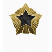 Знак различия Звезда Росстройнадзор большая металл