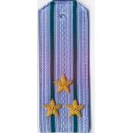 Погоны ПС ФСБ вышитые Полковник повседневные на синюю рубашку