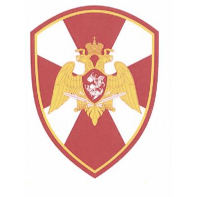 Шеврон РОСГВАРДИЯ общий ОРЁЛ 12*7,5 люрекс