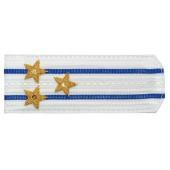Погоны ФСБ-ФСО вышитые Полковник парадные на белую рубашку