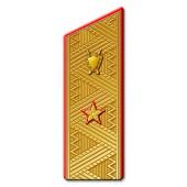 Погоны Юстиция ВМФ генерал-майор парадные со скосом на китель метанит