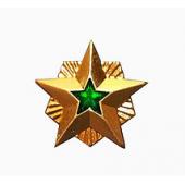 Знак различия Звезда Ростехнадзор большая металл