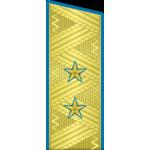 Погоны ВКС-ВВС-ВДВ генерал-лейтенант на китель парадные метанит