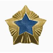 Знак различия Звезда Минэнерго большая металл