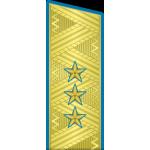 Погоны ВКС-ВВС-ВДВ генерал-полковник на китель парадные