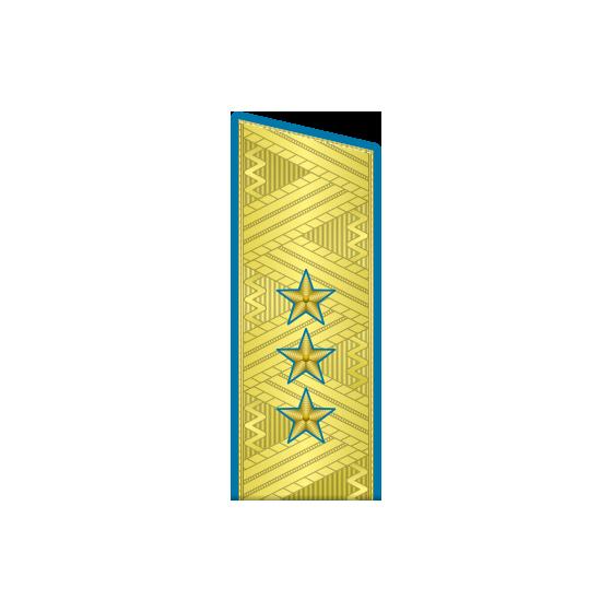 Погоны генерал-полковник ВДВ-ВВС на китель парадные