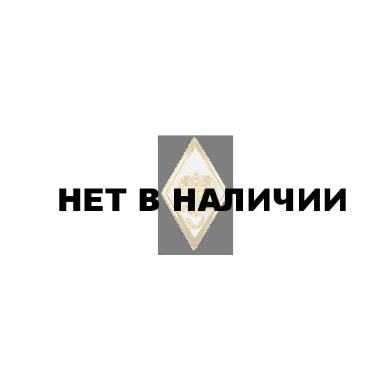 Нагрудный знак Академия ВС неуставной металл