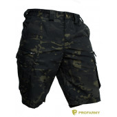 Шорты мужские SOMALI-CPR-69 Multicam black