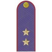 Погоны УИС (ФСИН) генерал-лейтенант на китель повседневные
