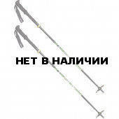 Треккинговые палки Element Pro Alu (2 шт)