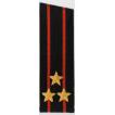 Погоны Береговые части ВМФ вышитые Полковник повседневные со скосом на китель