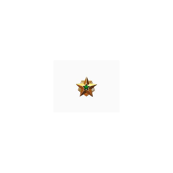 Знак различия Звезда Ростехнадзор малая металл