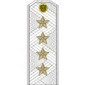 Погоны МО генерал армии старого образца (голубой кант) парадные на белую рубашку