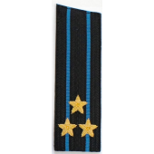 Погоны Авиация ВМФ вышитые Полковник повседневные со скосом на китель