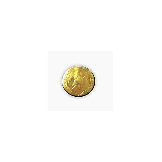 Пуговица ВДПО c венком диам. 22мм металл
