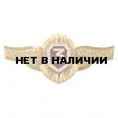 Нагрудный знак Классность р/с ВВ МВД 3 металл