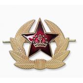 Кокарда Таджикистан звезда большая
