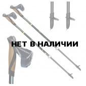 Телескопические палки для скандинавской ходьбы TRAINING SPEED 01N0516