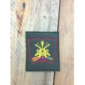 Нашивка на рукав Академия РВСН им Петра Великого старого образца на липучке повседневная олива