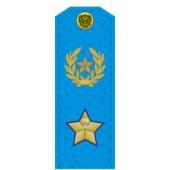 Погоны МО генерал армии нового образца голубой кант повседневные на голубую рубашку