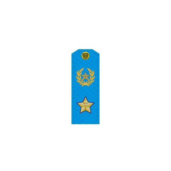 Погоны генерал армии нового образца голубой кант повседневные на голубую рубашку